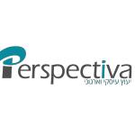 פרספקטיבה ייעוץ ארגוני ועסקי